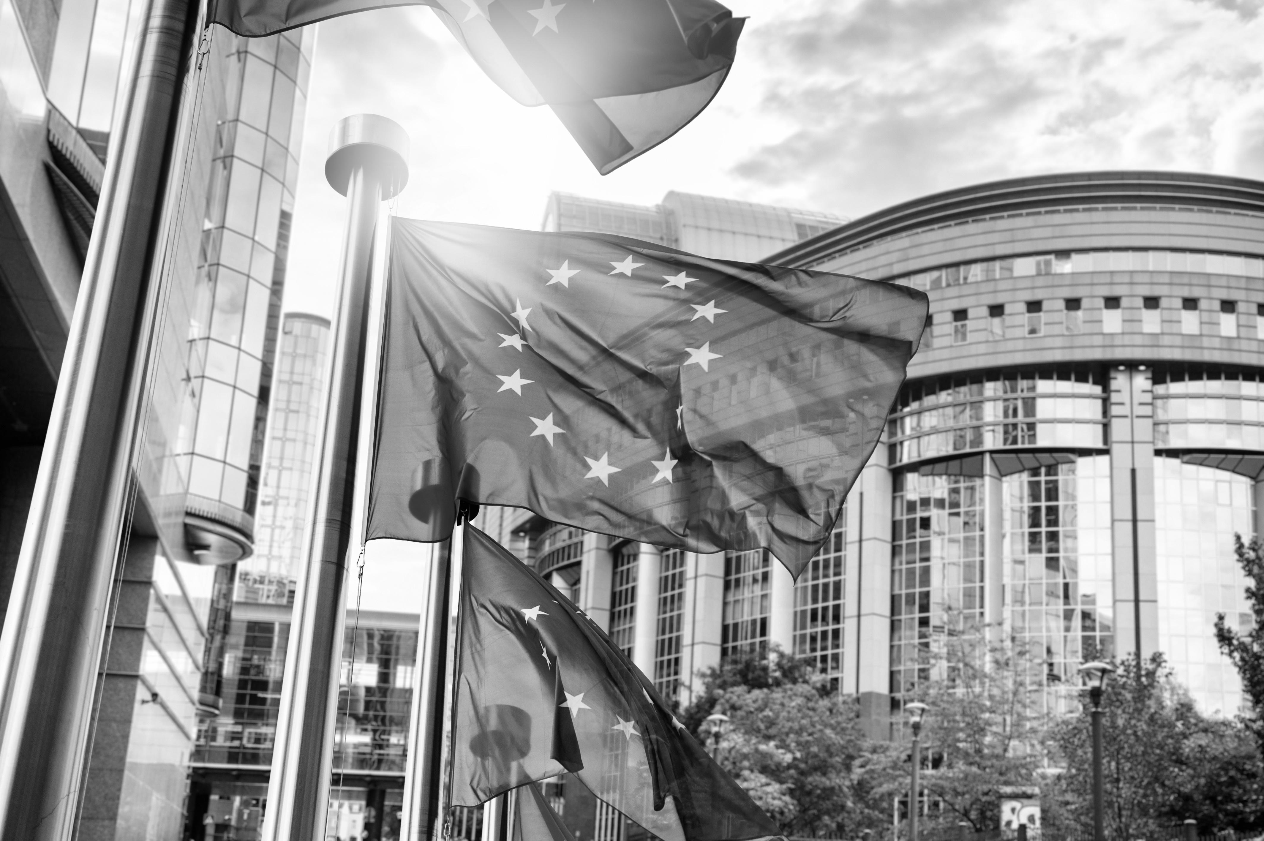 Article - Capital Markets Union