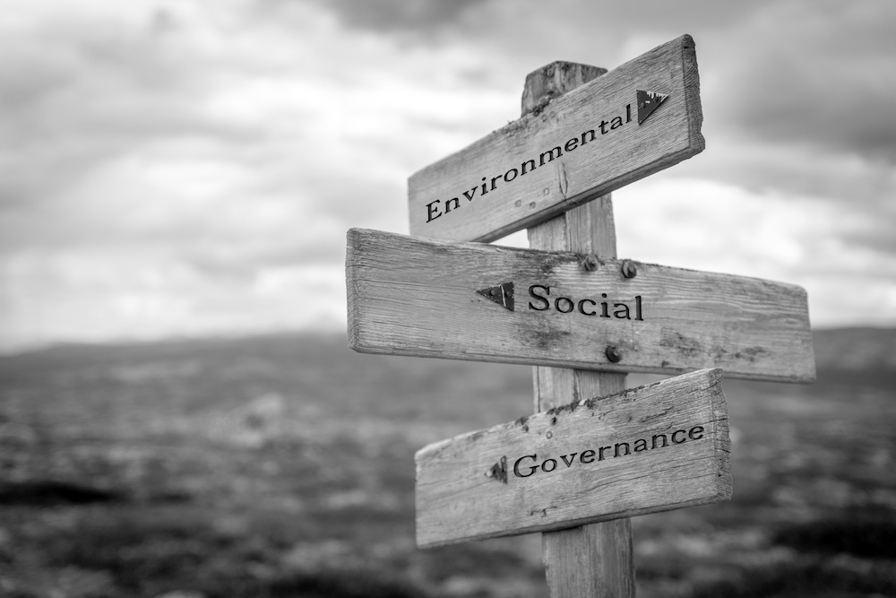 Article - Sustainability culture